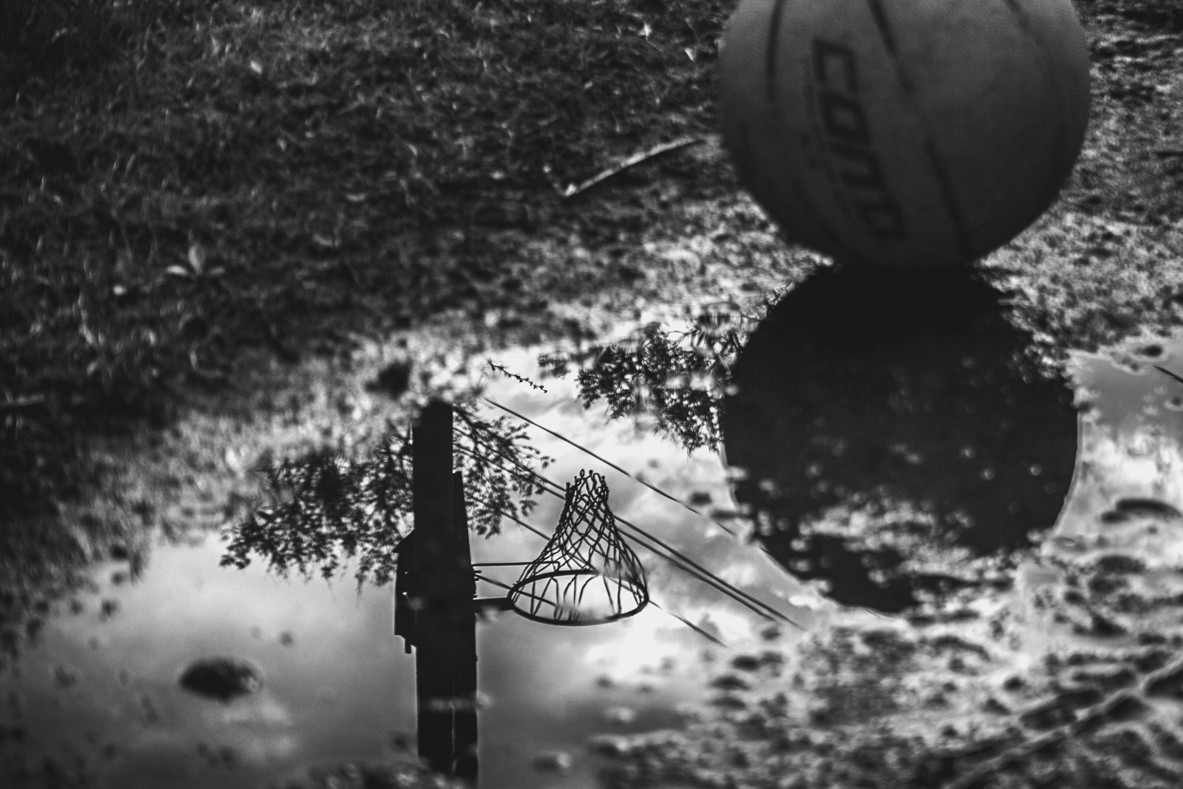 Baloncesto en gris